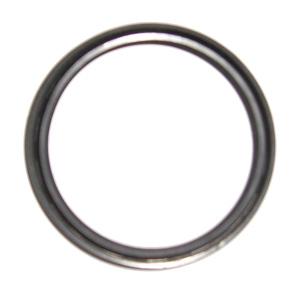 Starter Motor Oil Seal (P6 Only)